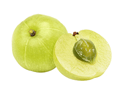 amla-fruit